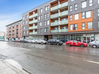 2229 Rue Ste-Catherine E. Photo 1
