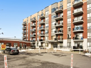 5 Rue Édouard-Lalonde Photo 1